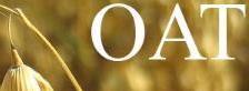 OAT Logo